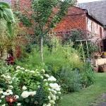 Gartenimpressionen_2